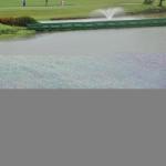 golf-cccg-2017 (11)