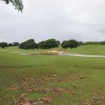 golf-cccg-2017 (17)
